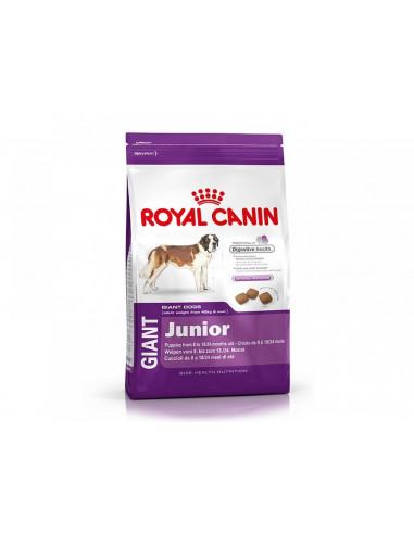 Alimento-per-cani-Giant-Junior